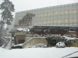 Doriot Library - December 18, 2009